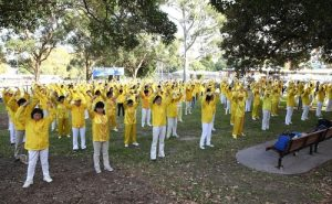 Falun Gong practitioners do the exercises together in Camperdown Park, Sydney, Australia.