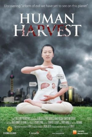 The documentary Human Harvest exposes the CCP's large-scale organ harvesting from living Falun Gong practitioners.